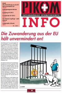 Pikom INFO Nr. 1/2013